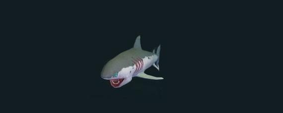 创造与魔法鲨鱼心脏有什么用