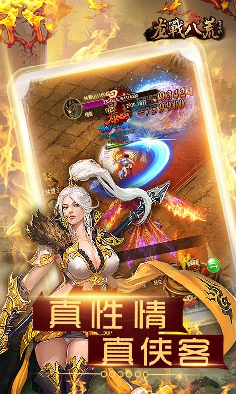 龙戰八荒飞升版游戏截图2